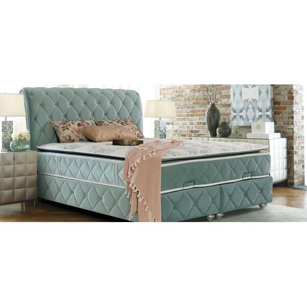 Pascual Storage Twin Sleigh Bed by House of Hampton