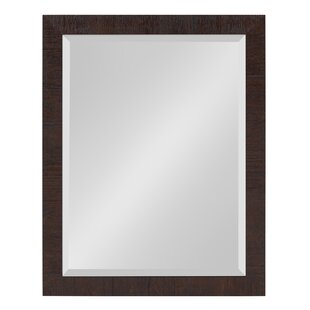 Bay Isle Home Steinhoff Framed Rectangle Accent Mirror