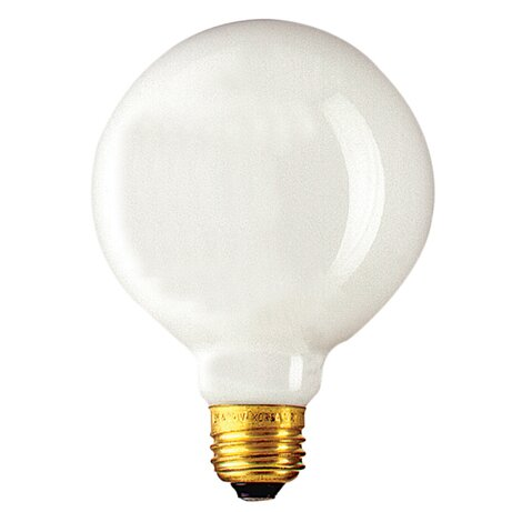 25W (2700K) Incandescent Light Bulb (Set of 15) by Bulbrite Industries