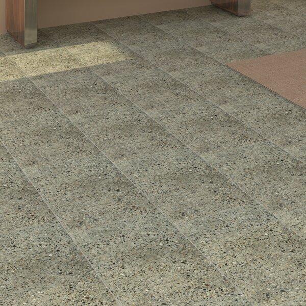 Tampico 12 x 24 Porcelain Field Tile