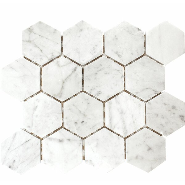 Carrara Hexagon 3 x 3 Stone Mosaic Tile in White Polished by Parvatile