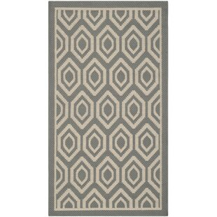 Catharine Anthracite / Beige Indoor / Outdoor Area Rug By George Oliver