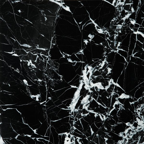 Marble 12 x 12 Field Tile in Black & White by Emser Tile