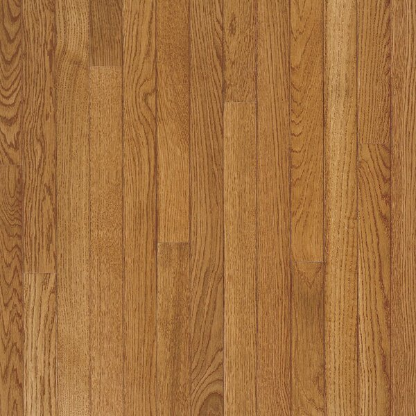 Fulton 2-1/4 Solid White Oak Hardwood Flooring in Low Glossy Fawn by Bruce Flooring