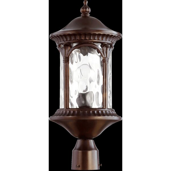 Witte 1-Light Lantern Head by Fleur De Lis Living