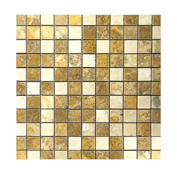 Polished 1 x 1 Natural Stone Mosaic Tile in Gold/Noce by QDI Surfaces