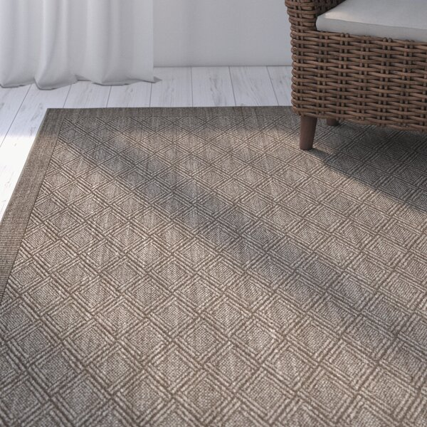 Allegra Hand-Woven Silver Area Rug by Highland Dunes