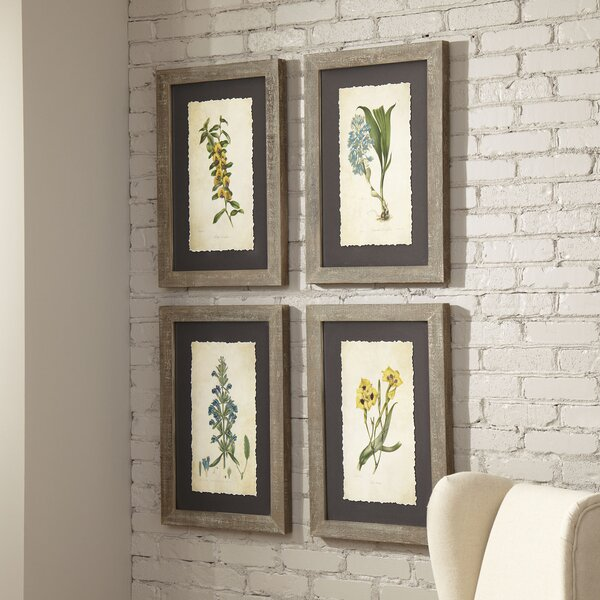 Verdure Framed Print II by Birch Lane™