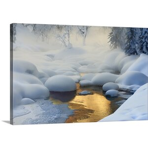Siberia -37 Degrees by Dmitry Dubikovskiy Photographic Print on Canvas by Great Big Canvas