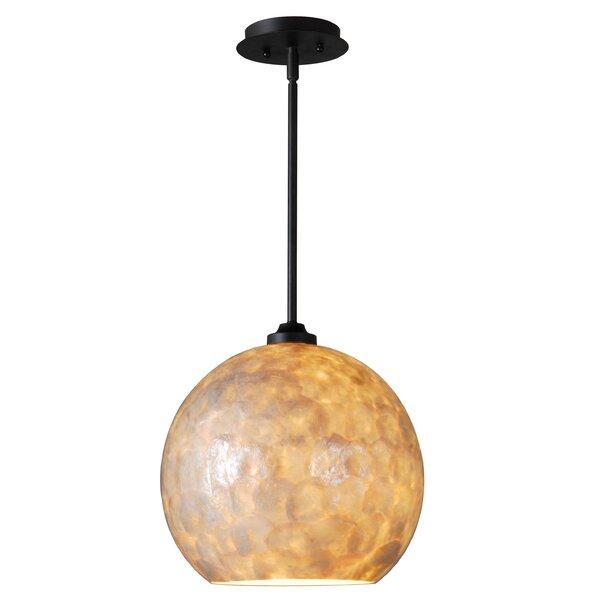 Aden 1-Light Pendant by Wildon Home ®