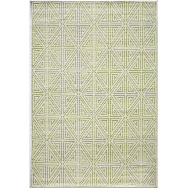 Solana Lime Green Indoor/Outdoor Area Rug by Birch Lane™
