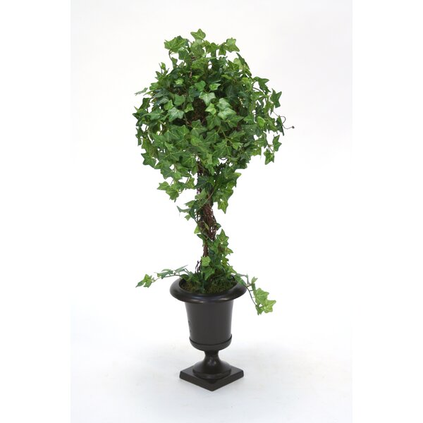 Mini Floor Ivy Topiary in Urn by Charlton Home