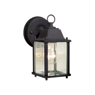 Affordable Fava 1-Light Outdoor Wall Lantern By Charlton Home
