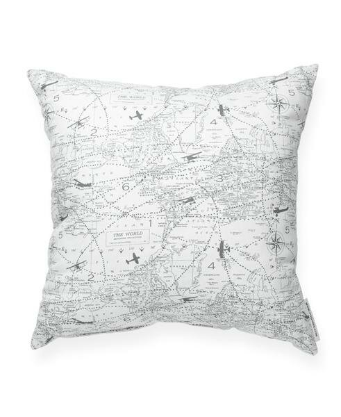 Vivan Airplane Aviation Cotton Throw Pillow by Ivy Bronx