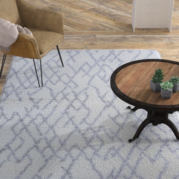 Drinnon White/Light Gray Area Rug by Williston Forge