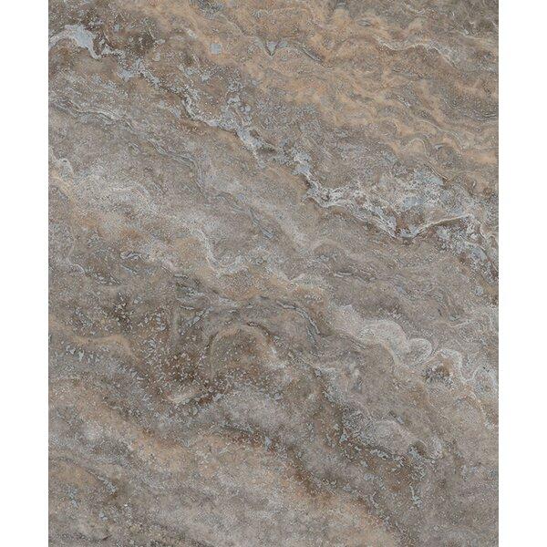 Silver Travertine 4 x 4 Marble Field Tile in Brown by Seven Seas