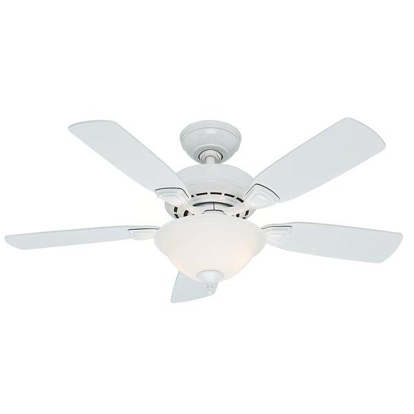 44 Caraway 5-Blade Ceiling Fan by Hunter Fan