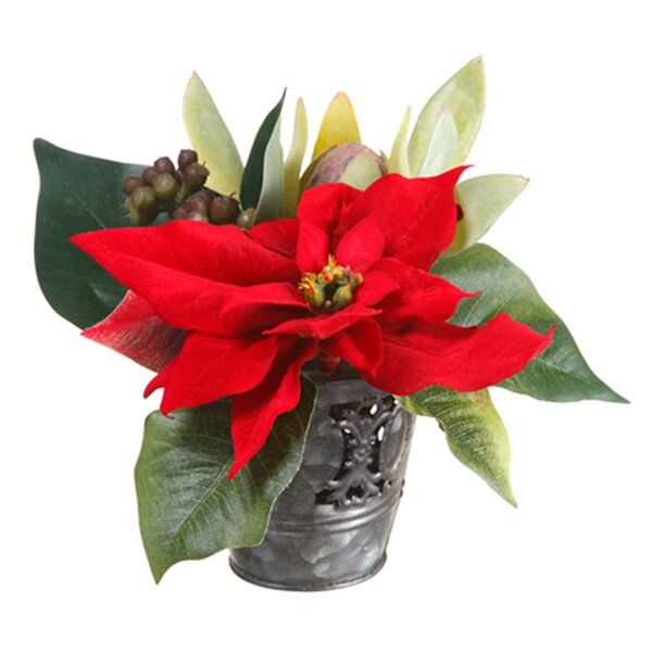 Poinsettia and Protia in Metal Planter by Dalmarko Designs