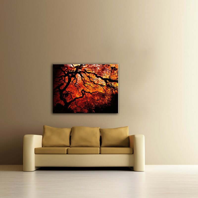 'Fire Breather - Japanese Tree' by John Black Framed Photographic Print