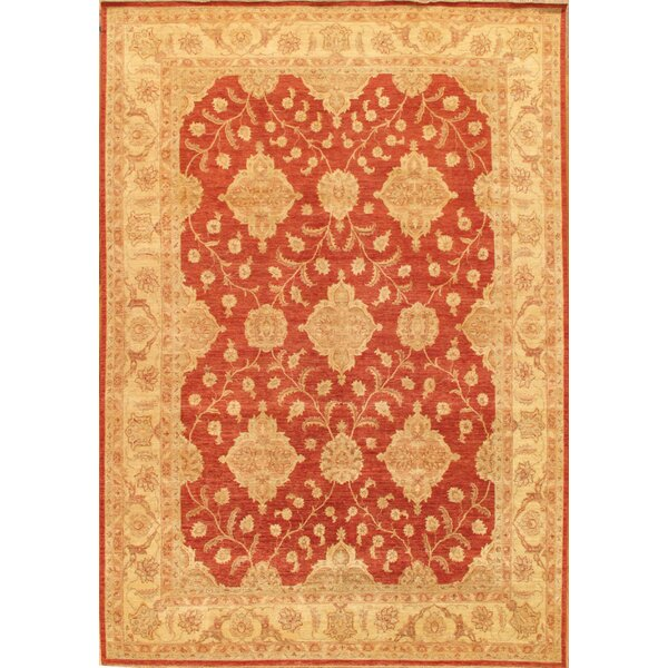 Ferehan Hand-Knotted Rust/Beige Area Rug by Pasargad