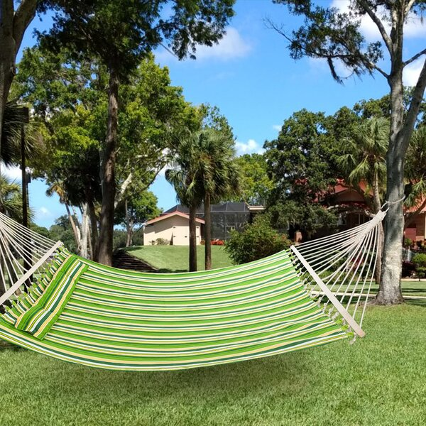 Dolton Double Classic Hammock by Rosecliff Heights