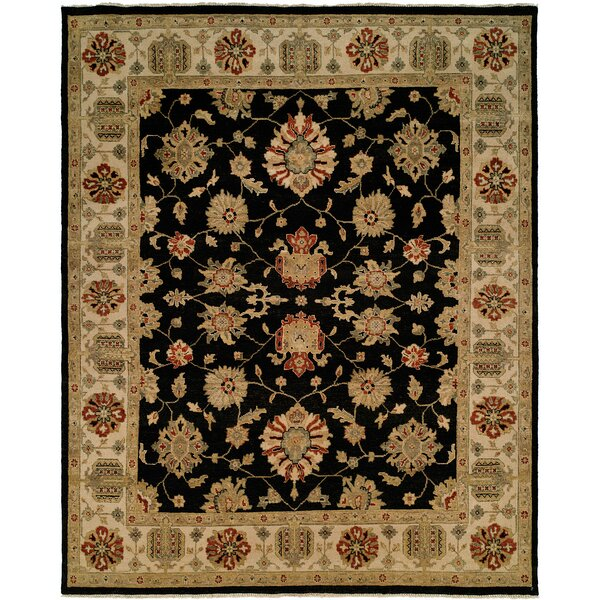 Aqaba Hand-Knotted Black/Brown Area Rug by Wildon Home ®