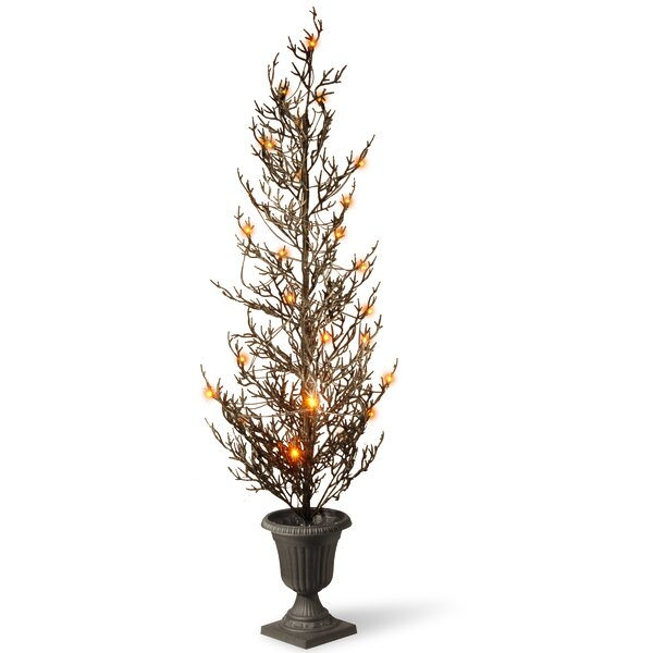Halloween Tree with Lights by National Tree Co.
