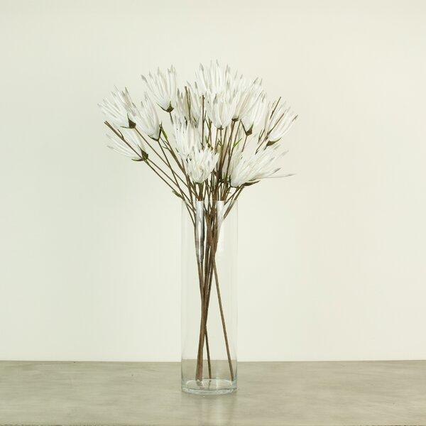 6 Piece Twig Branch (Set of 6) by Gracie Oaks
