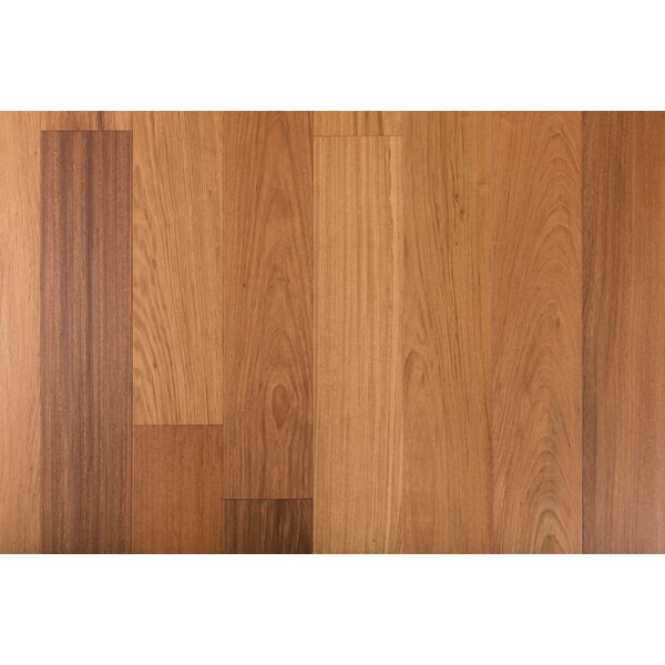 Exotic 7-1/2 Engineered Brazilian Cherry Hardwood Flooring in Natural by GoHaus