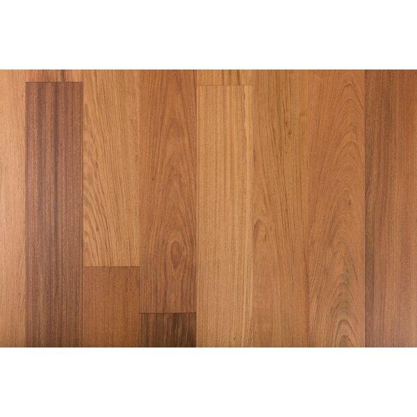 Exotic 7-1/2 Engineered Brazilian Cherry Hardwood Flooring in Natural by GoHaus