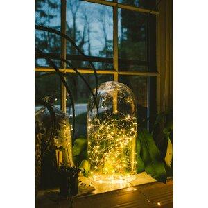 100-Light 33 ft. Fairy String Lights