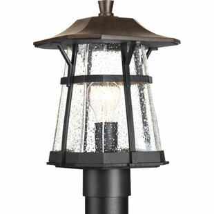 Coupon Triplehorn 1-Light Antique Lantern Head in Espresso By Alcott Hill