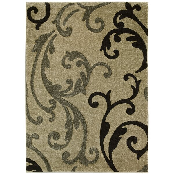 Floral Champagne Area Rug by Brady Home