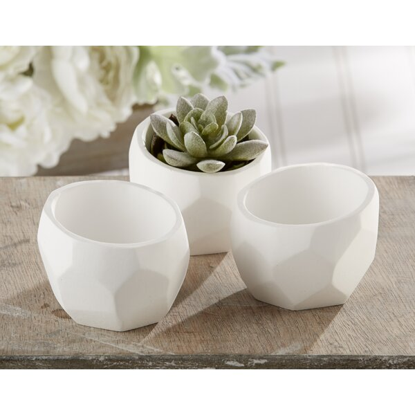 Modern Garden Geometric Plaster Pot Planter (Set of 12) by Kate Aspen