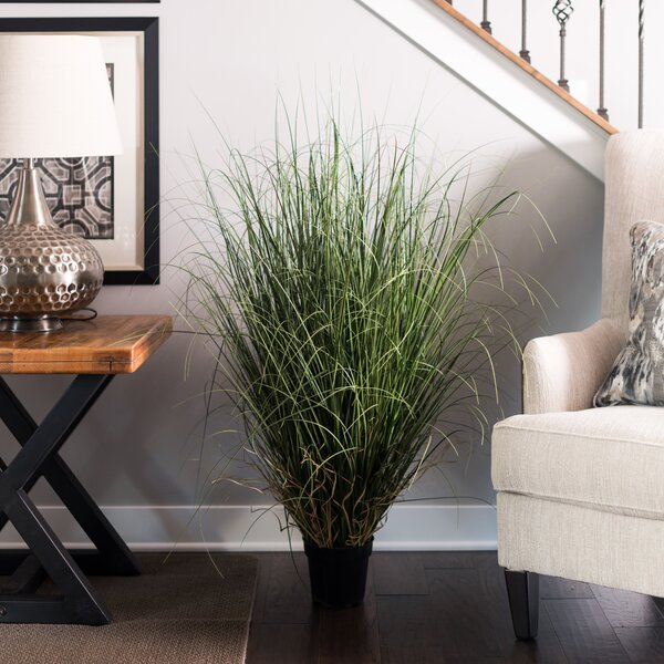 Artificial Foliage Grass in Pot by Highland Dunes