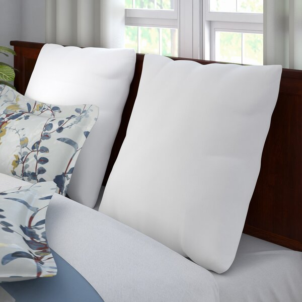 Oakdale Euro Pillow (Set of 2) by Andover Mills