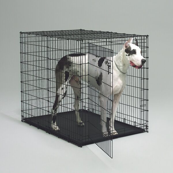 Deanne Pet Crate by Archie & Oscar