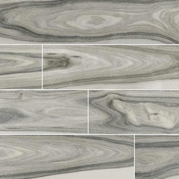 Dellano Moss Polished 8 x 48 Porcelain Wood Look Tile in Gray by MSI