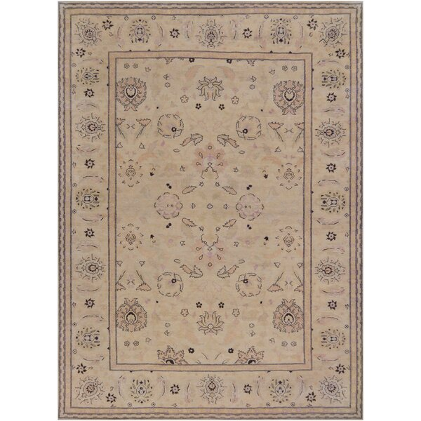 Agra Fine Hand-Knotted Wool Brown Indoor Area Rug by Mansour