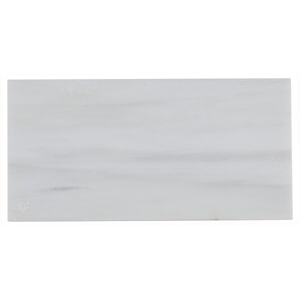Harrison 3 x 6 Marble Subway Tile in Contempo White