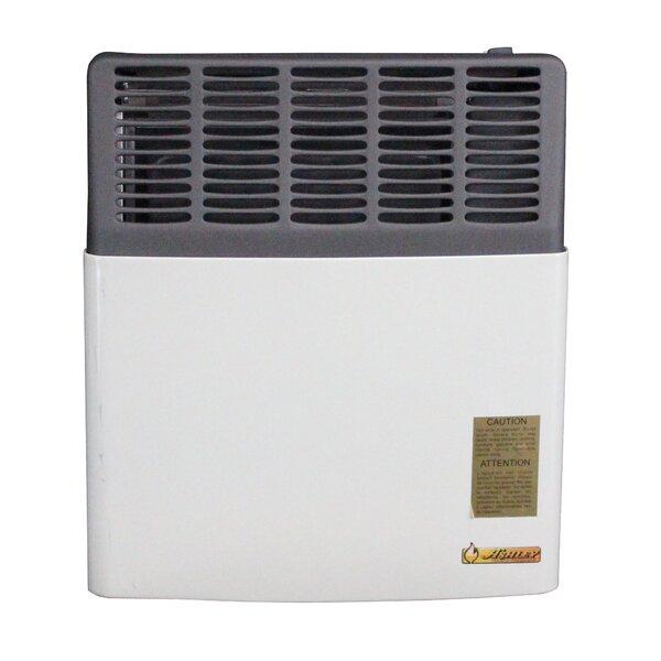 11,000 BTU LP Gas Direct Vent Heater by Ashley Hearth