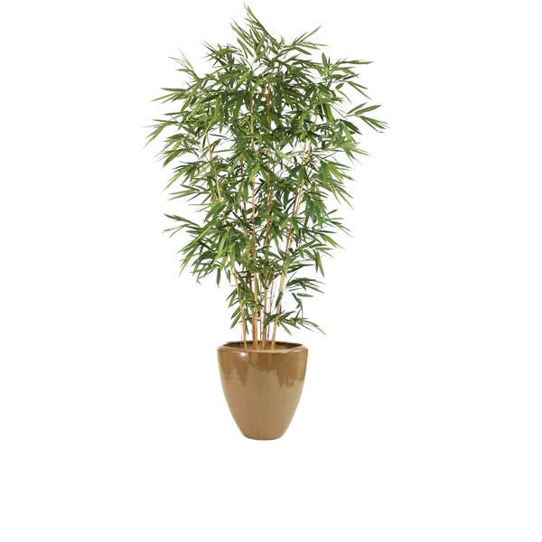 Bamboo Tree in Pot by Distinctive Designs