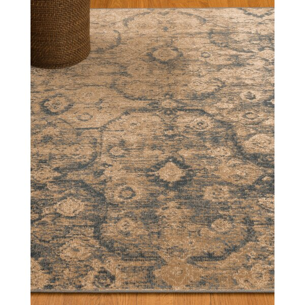 Iris Oriental Blue/Brown Area Rug by Natural Area Rugs