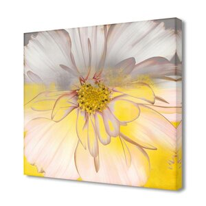 'Painted Petals XXXIV' Graphic Art on Wrapped Canvas by Ready2hangart