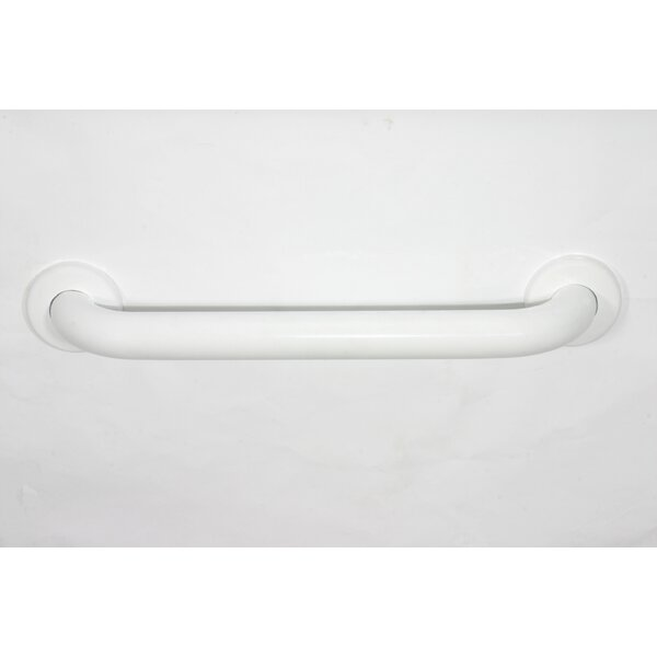"ADA Stainless Steel 30"" Grab Bar by CSI Bathware"