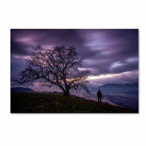 The Tree of Love Grenoble by Mathieu Rivrin Photographic Print on Wrapped Canvas by Trademark Fine Art