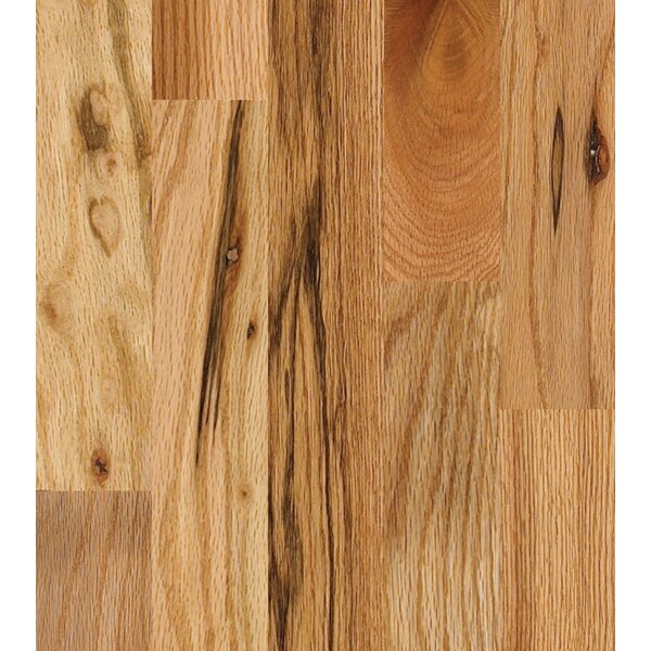 Paradise 2-1/4 Solid Oak Hardwood Flooring in Natural by Albero Valley