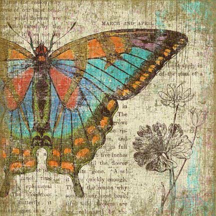 Butterfly 2 by Graphic Art Plaque by August Grove