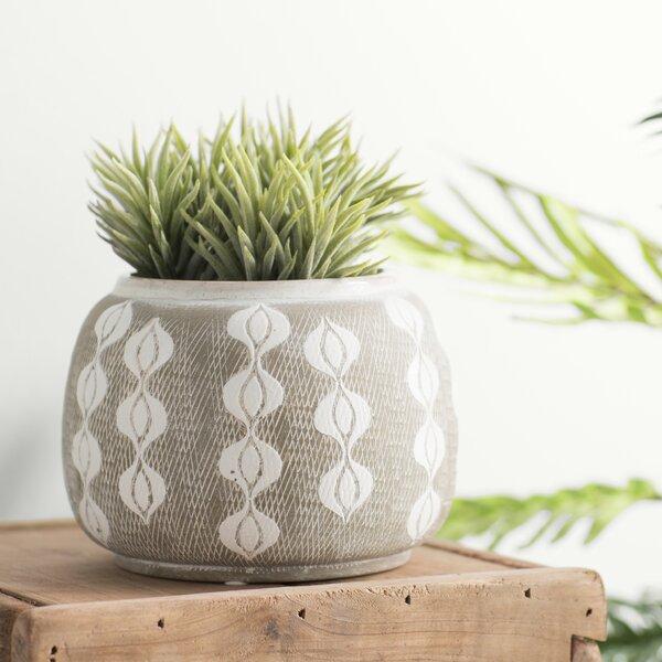 Barbera Ceramic Pot Planter by Langley Street