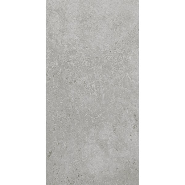Kent 12 W x 24 Porcelain Field Tile in Warm Gray by Parvatile